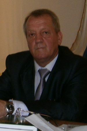 Мельников Владимир Витальевич