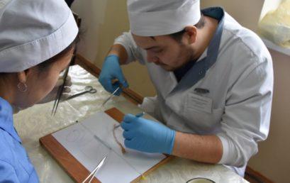 I внутривузовская олимпиада по хирургии «Мануальные навыки в хирургии»